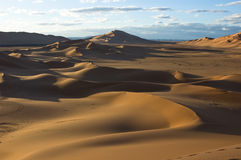 沙漠沙丘撒哈拉大沙漠 免版税图库摄影