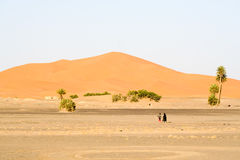 沙漠沙丘横向摩洛哥人 免版税库存照片