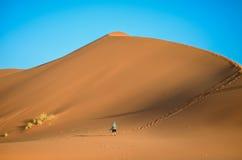 沙漠沙丘的一个人 免版税库存照片