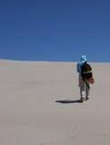 沙漠沙丘 库存图片