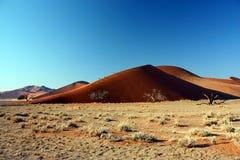 沙漠沙丘namib 库存图片