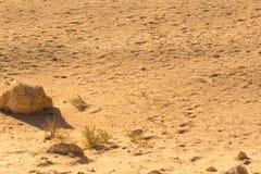 沙漠沙子样式纹理 图库摄影