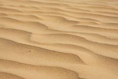 沙漠沙子 免版税图库摄影