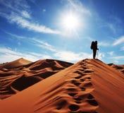 沙漠沙子 免版税库存照片