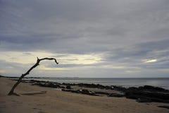 沙漠海滩美好的风景视图在酸值lanta的在泰国南亚的甲米府日落的 免版税库存照片