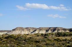 沙漠灌木和白色峭壁在海滨 免版税库存图片