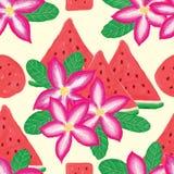 沙漠玫瑰色西瓜无缝的样式 库存图片