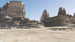沙漠环境 库存图片