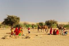 沙漠生活在印度 免版税库存照片