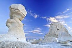 沙漠白色 免版税图库摄影