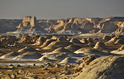 沙漠白色 库存照片