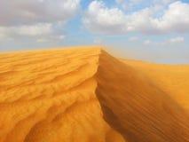 沙漠的沙子 免版税图库摄影