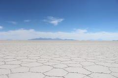 沙漠盐 库存照片