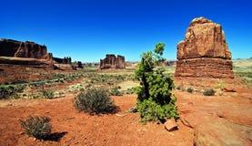 沙漠砂岩风景充满活力的视图 免版税库存图片