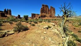 沙漠砂岩风景充满活力的视图 免版税图库摄影