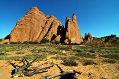 沙漠砂岩风景充满活力的视图 库存图片