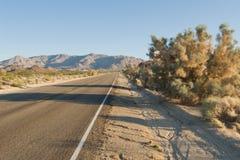 沙漠离开的路 免版税库存照片