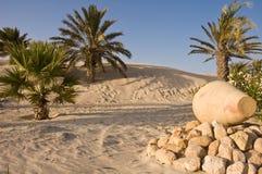 沙漠绿洲 库存图片