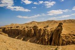 沙漠美丽的景色  免版税库存照片