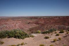 沙漠被绘的视图 图库摄影