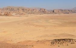 沙漠西奈 库存照片
