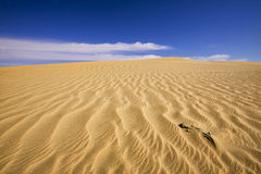 沙漠起波纹的沙子 库存图片