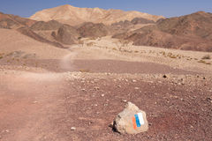 沙漠足迹标号石头 库存图片