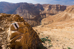 沙漠足迹标号 免版税图库摄影