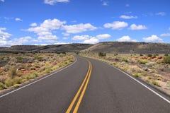 沙漠路 库存图片
