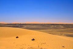 沙漠边缘撒哈拉大沙漠 库存照片