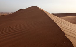 沙漠近迪拜沙丘 免版税库存图片
