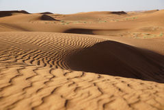 沙漠迪拜 库存照片