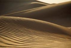 沙漠迪拜 免版税图库摄影