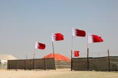 沙漠阵营在巴林 免版税库存照片
