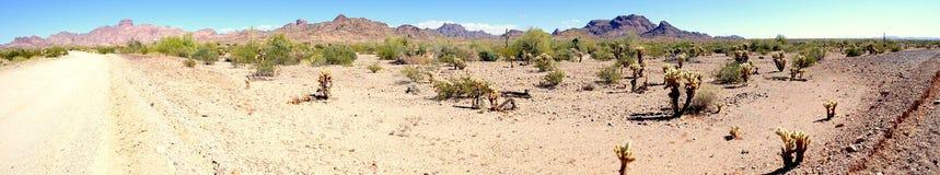 沙漠风景全景 免版税库存图片