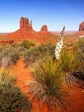 沙漠风景在亚利桑那,纪念碑谷 免版税库存照片