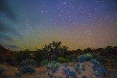沙漠风景在晚上 库存照片