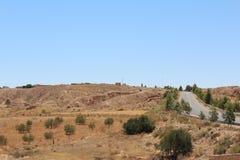 沙漠风景在有的突尼斯棕榈 免版税库存照片