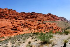 沙漠风景的内华达 免版税库存照片