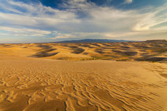 沙漠风景的美丽的景色 戈壁 蒙古 免版税库存照片