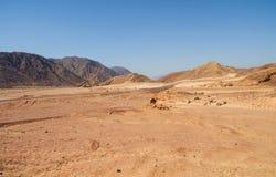 沙漠风景路骆驼山 免版税图库摄影