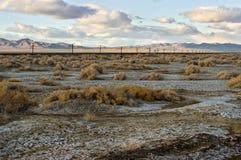 沙漠风景 图库摄影