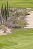 沙漠高尔夫球场绿色 免版税图库摄影
