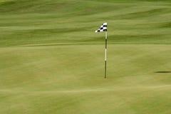 沙漠高尔夫球场绿色 免版税库存照片