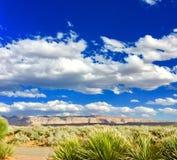 沙漠高尔夫球场 免版税图库摄影