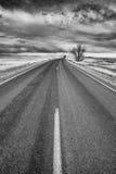 沙漠高速公路的黑白图片 免版税库存图片