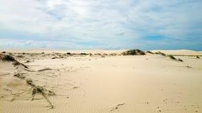 沙漠@安娜海湾 免版税库存照片