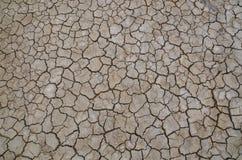 沙漠 被研的镇压 免版税库存图片