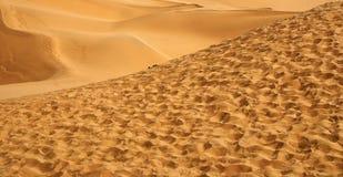 沙漠 库存照片