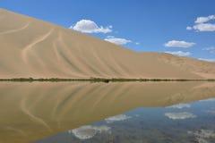 绿洲沙漠 图库摄影